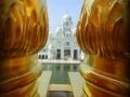Vista desde la azotea. Templo Dorado