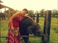 Con elefante bebé