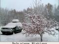 Bajo nieve