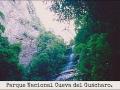 Parque Nacional Cueva del Guácharo