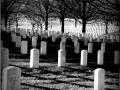 Cementerio de Arlington