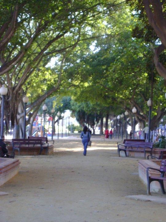 Alejarse parque Alicante