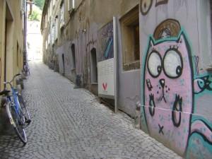 Callejón con gato rosado y gigante