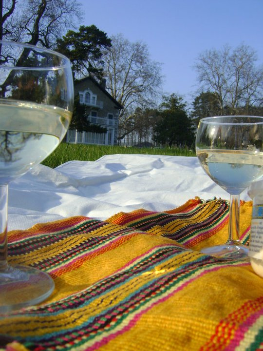 Copas de vino picnic