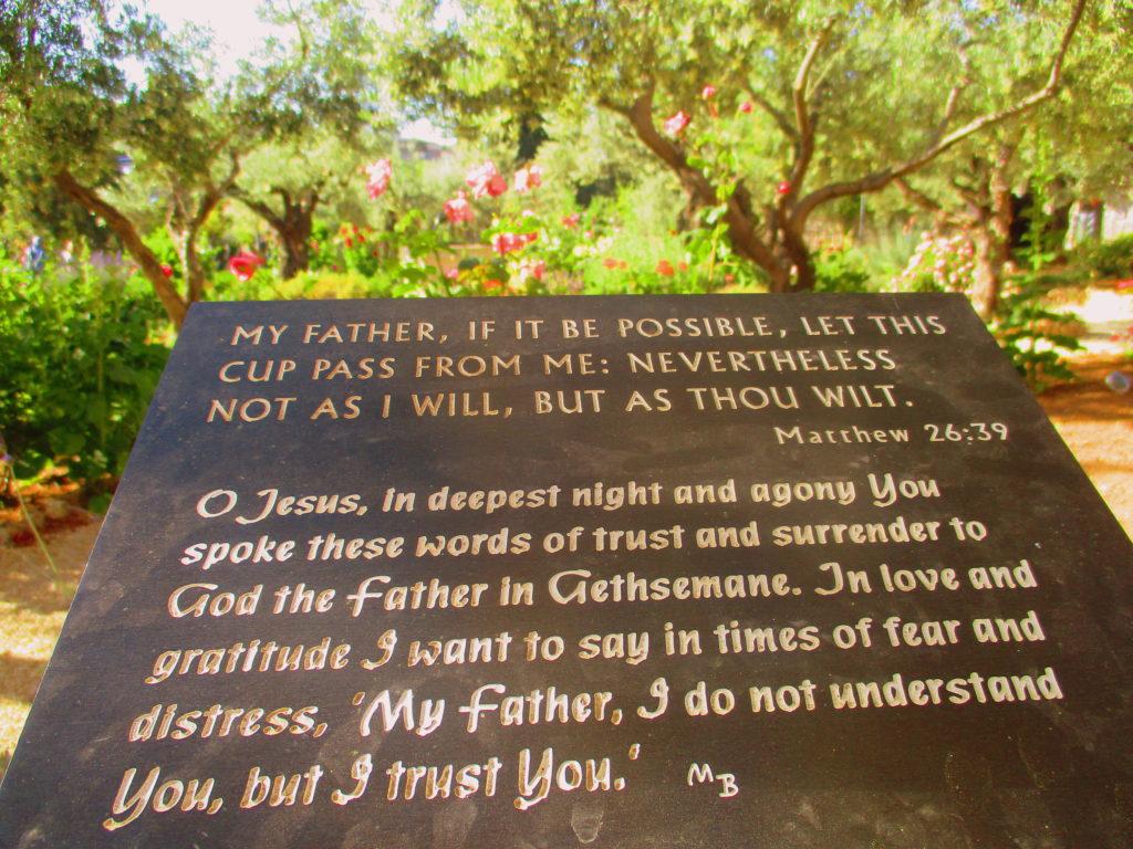 Jardín Getsemaní Lugares de la Biblia Hoy